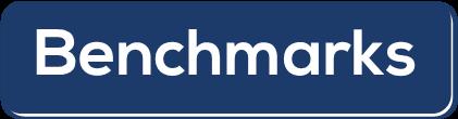 Assessment Benchmarks