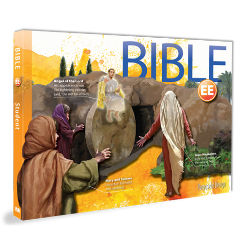 PDP Bible:  Early Education Student Edition, 3rd Edition