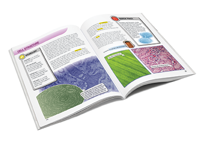 Purposeful Design Publications Science Series Student Edition